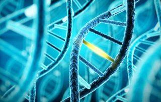 DNA_Blog CRISPR-Cas