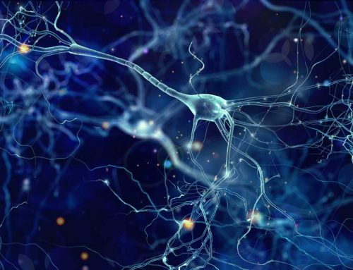 Medizintechnik-Innovationen und Personalisierte Medizin