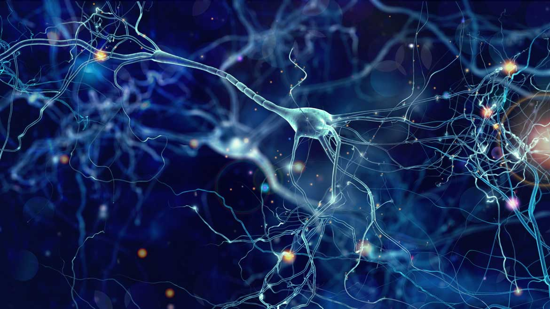 Medizintechnik-Innovationen, Neuronen