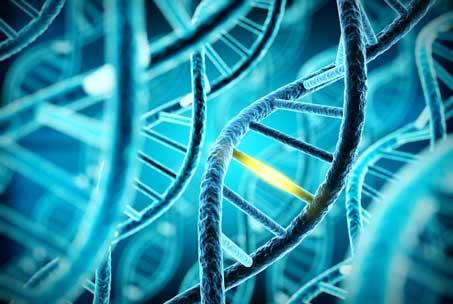 DNA - Innovationsmanagement in Life Sciences