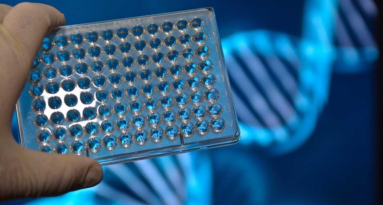 Coronavirus-Impfstoff und PCR-Testung