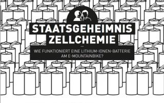 Artikel Lithium-Ionen-Batterie