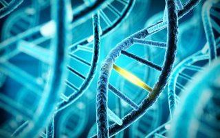 Innovationsmanagement in Life Sciences, Artikel, Autorin Simone Giesler