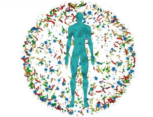 Wie kann das Mikrobiom bei COVID-19 helfen?